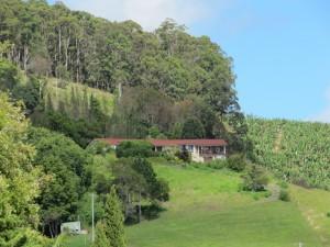 house on da hill