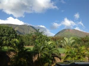 Hoolio Mounts