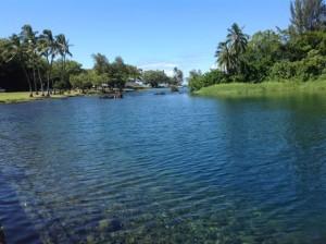 Hilo Pond