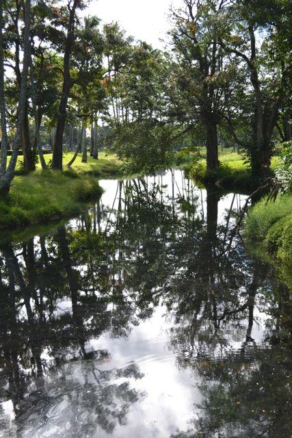 Hilo stream