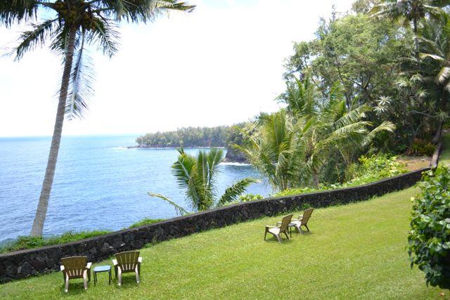 Palm cliffs lawn