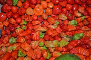 hilo chilis 1