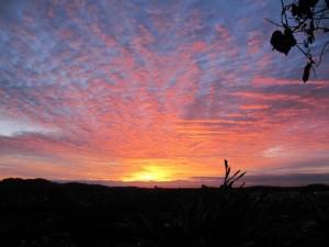 Sunrise May 20